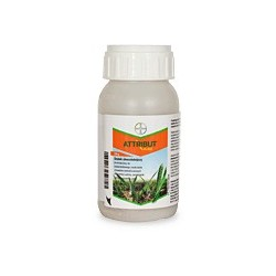 ATTRIBUT 70 SG BAYER 120 G